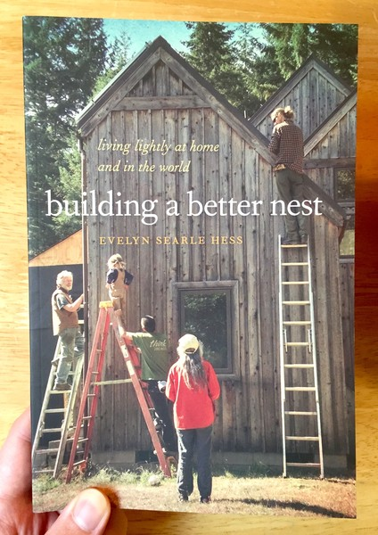 building a better nest book cover