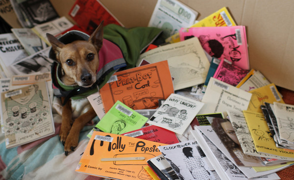 a cute dog covered in zines