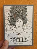 The Little Book Of Spells: A Beginner's Guide to White Witchcraft (silver/white)