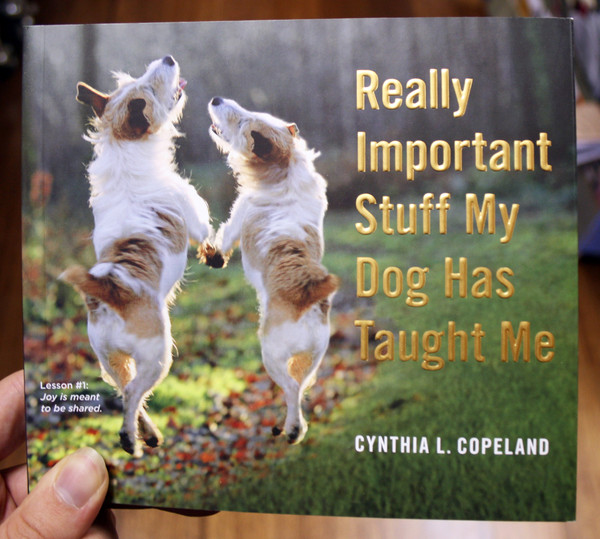 really important stuff my dog has taught me by cynthia copeland