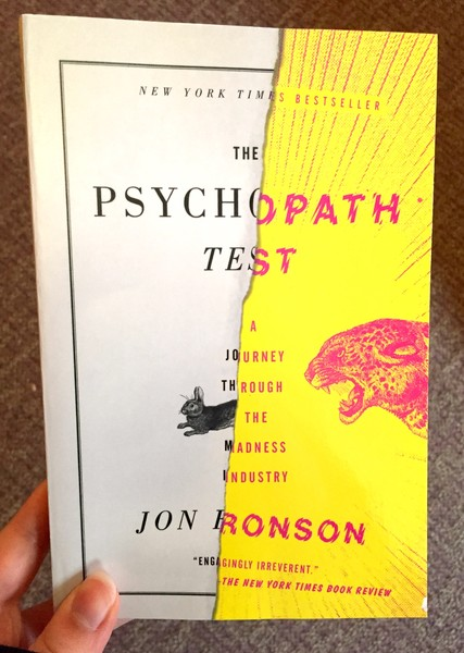 Psychopath Test: A Journey Through The Madness Industry, The